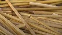 Fransız çift plastiğe alternatif çavdar samanından pipet üretiyor