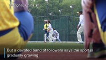 'What's cricket?' China strikes out against the odds
