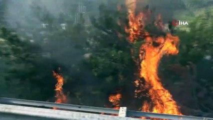 Tanker Otoyolda Yandı, Alevler Ağaçlık Alana Sıçradı