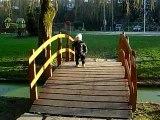 Balade au parc