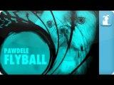 Adele - SkyFall Parody - Pawdele - FlyBall Petody