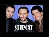 Stupcat Munich humor live