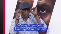 'Coming 2 America' Features Wesley Snipes