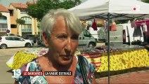 Le Barcarès (Pyrénées-Orientales) : quand la vague estivale saisit une petite ville de province
