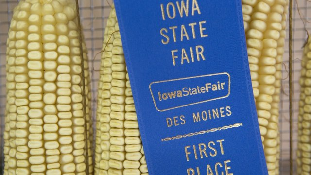 Democratic 2020 Hopefuls Head to Iowa State Fair