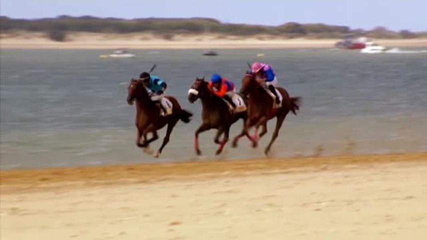 Fin de semana de carreras de caballos en las playas de Sanlúcar de Barrameda | Godialy.com