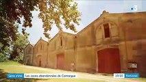 Camargue : les vestiges d'un passé viticole