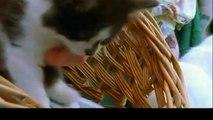 밀양출장안마 -후불1ØØ%ョOiOV2671V8135{카톡AQ52} 밀양전지역출장마사지 밀양오피걸 밀양출장안마 밀양출장마사지 밀양출장안마 밀양출장콜걸샵안마 밀양출장아로마 밀양출장⻐⺟◟