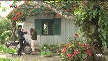Đánh Cắp Giấc Mơ Tập 21 -- Ngày 11/8/2019 -- phim đánh cắp giấc mơ tập 22 - Phim Việt Nam VTV3 tập cuối - Phim Danh Cap Giac Mo Tap 21