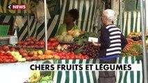 Le Carrefour de l'info (17h-18h) du 12/08/2019