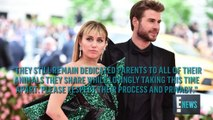 Miley Cyrus & Liam Hemsworth Split After Less Than 1 Year of Marriage