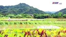 Đại Thời Đại Tập 135 - đại thời đại tập 136 - Phim Đài Loan - THVL1 Lồng Tiếng - Phim Dai Thoi Dai Tap 135