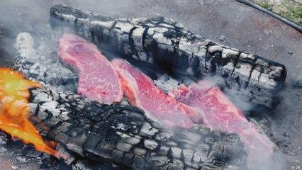 أسادو - في موسم شواء اللحوم