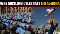 Muslims across the globe celebrate Eid al-Adha, Know why they celebrate it