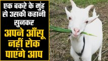 A goat narrates its own story, you won't be able to hold back your tears