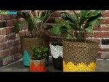 DIY: Painted Planter Baskets