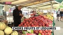 Le Carrefour de l'info (19h30) du 12/08/2019