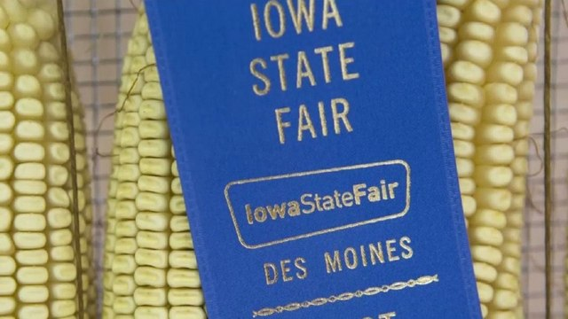 How the Iowa State Fair Became a Key Campaign Stop