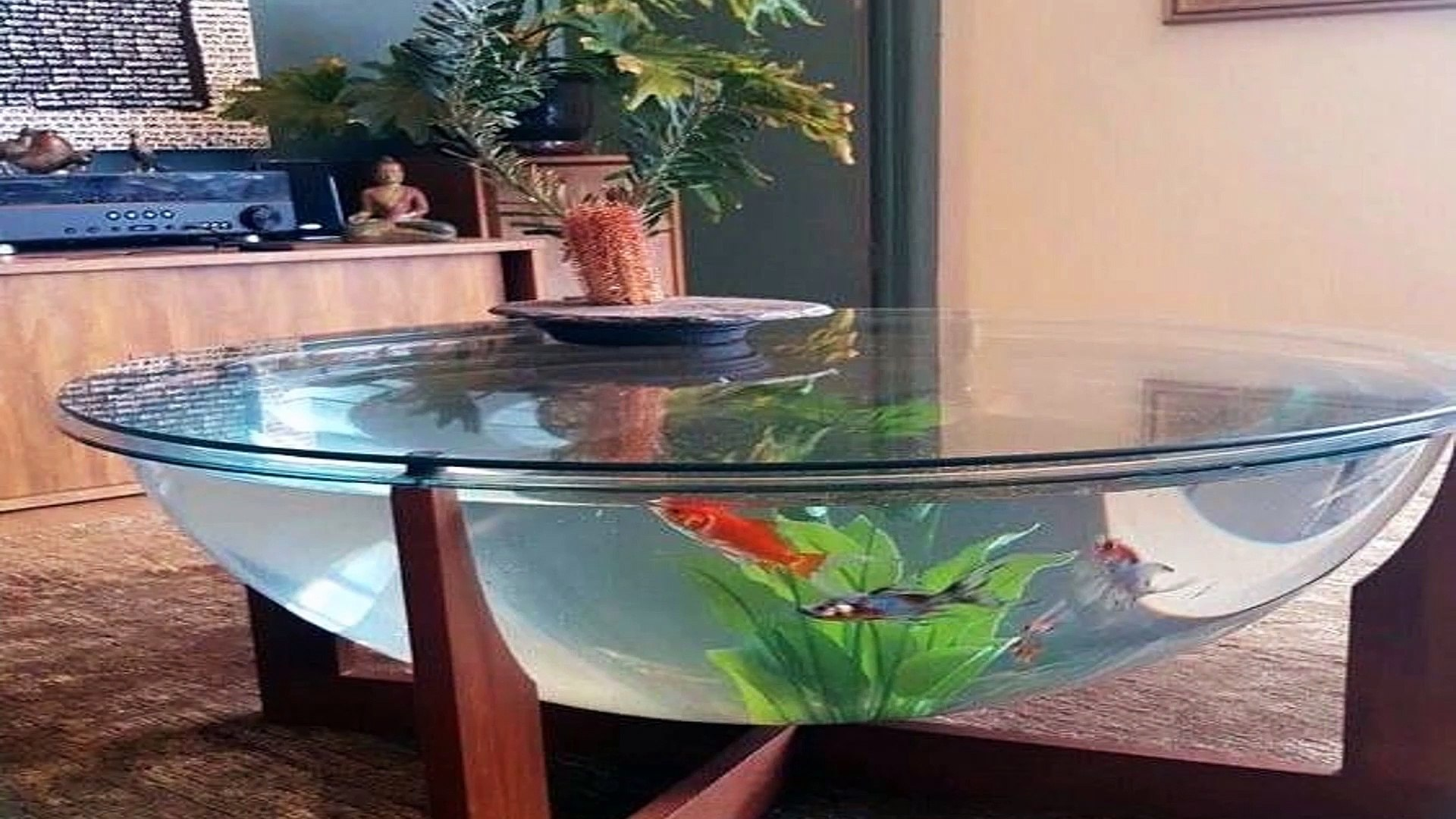 - TOP5 Aquarium Coffee Table For Your Home! - Dailymotion Video