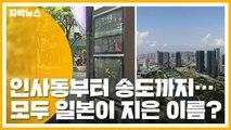 [자막뉴스] 인사동부터 인천 송도까지...일본이 지은 이름이라고? / YTN