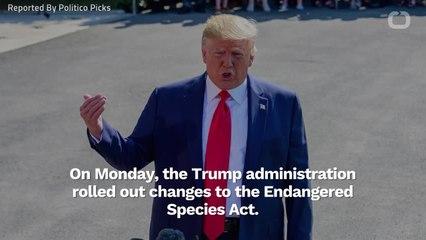 Trump To Overhaul Endangered Species Act