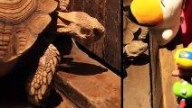 송정출장안마 -후불1ØØ%ョO7OV5222V7802{카톡VV23} 송정전지역출장마사지 송정오피걸 송정출장안마 송정출장마사지 송정출장안마 송정출장콜걸샵안마 송정출장아로마 송정출장⾩⻐⻓