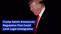 Trump's Plans For Legal Immigration