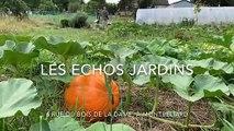 A Montbéliard, Nicolas et Virginie veulent promouvoir une agriculture naturelle