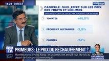 Comment le réchauffement climatique affecte les prix des fruits et légumes