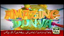 AMAZING DUNYA | ARY News | Eid Special | 13 August