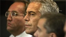 Miami Herald Reporter: Epstein's Victims 'Distraught' He Won't Face Justice