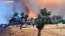 Sur l'île d'Eubée en Grèce, des flammes toujours incontrôlables