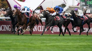 Les plus grands hippodromes de France