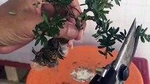 의왕출장안마 -후불1ØØ%ョO7OV5222V6739{카톡CS69} 의왕전지역출장마사지 의왕오피걸 의왕출장안마 의왕출장마사지 의왕출장안마 의왕출장콜걸샵안마 의왕출장아로마 의왕출장⊏ゎ∺