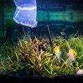 L'introduction de nouveaux poissons dans un aquarium
