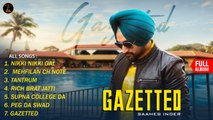 SAAHEB INDER - GAZETTED (Full Album) - Latest Punjabi Songs 2019 | Malwa Records