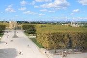 Montpellier : la ville la plus verte parmi les grandes communes