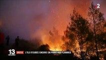 """En Grèce, """"catastrophe écologique"""" en cours sur l'île d'Eubée, ravagée par les flammes"""
