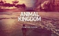 Animal Kingdom - Promo 4x13