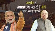 Article 370 : PDP सांसदों ने कपड़े फाड़कर किया विरोध प्रर्दशन, जानें क्या है धारा 370