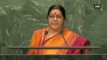 Kashmir An Integral Part Of India, Pakistan Must Stop Dreaming About It -  Sushma Swaraj