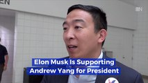 Andrew Yang Gets A Tesla Endorsement
