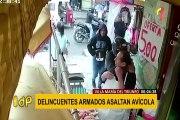 VMT: roban 10 mil soles en asalto a avícola