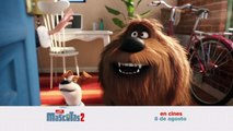 La vida secreta - The Secret Life of Pets 2