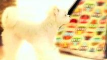 무교동출장안마 -후불1ØØ%ョOiOV2671V8135{카톡AQ52} 무교동전지역출장마사지 무교동오피걸 무교동출장안마 무교동출장마사지 무교동출장안마 무교동출장콜걸샵안마 무교동출장아로마 무교동출장㍕ご≖
