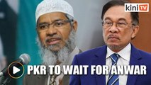PKR doesn't have a position on Zakir Naik, to wait for Anwar