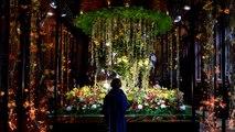 Brussels blooming as city hosts international flower festival