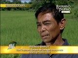 Ilocos Norte farmers progress through self-help group