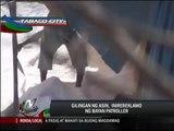 Bayan Patroller reports illegal salt manufacturing company