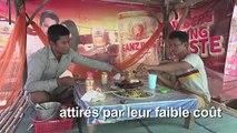 Le rat en brochette, un mets fin de Battambang au Cambodge